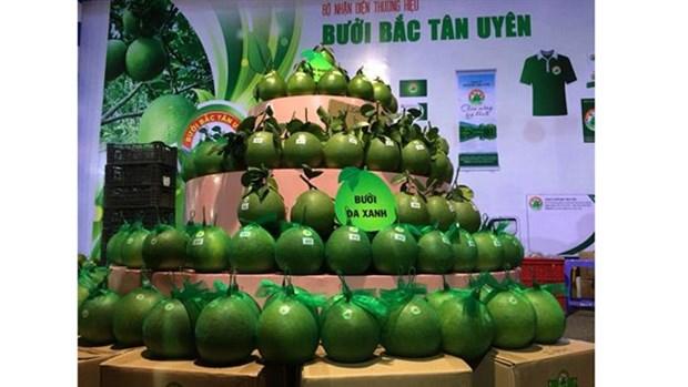 Binh Duong cherche a valoriser ses agrumes hinh anh 1