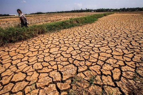 Assurer la securite alimentaire dans le contexte du changement climatique hinh anh 2