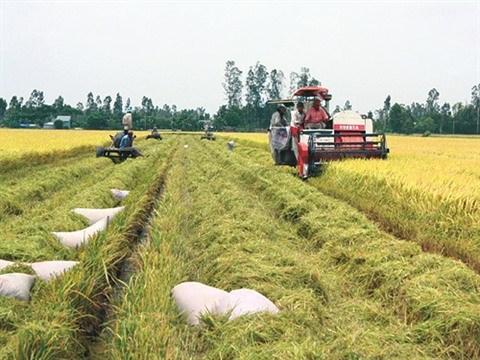 Assurer la securite alimentaire dans le contexte du changement climatique hinh anh 1