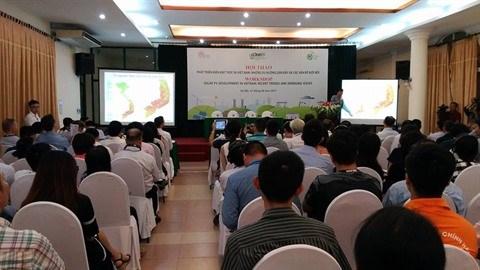 Hanoi : le developpement de l'electricite solaire au Vietnam au cœur d'un colloque hinh anh 1