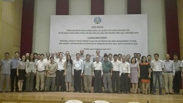Intensification de la preservation des especes de primates d'ici 2025 hinh anh 1