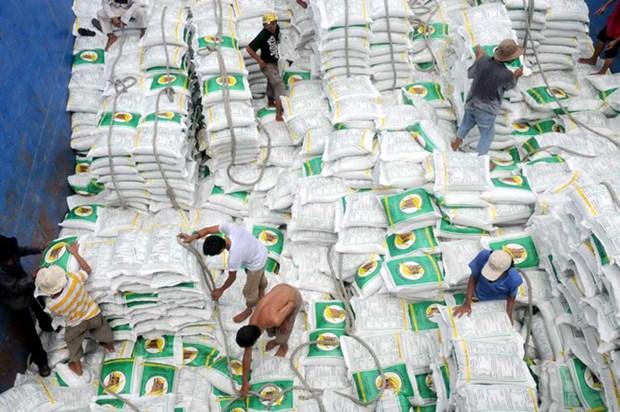 Les exportations de riz devraient atteindre 5,2 millions de tonnes en 2017 hinh anh 1