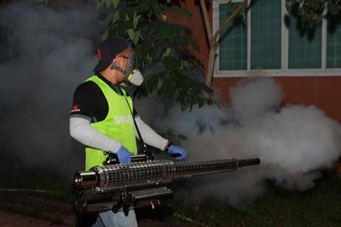 La dengue recule a Ho Chi Minh-Ville hinh anh 1