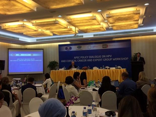 APEC 2017 : le programme de la 8e journee de la SOM3 hinh anh 1