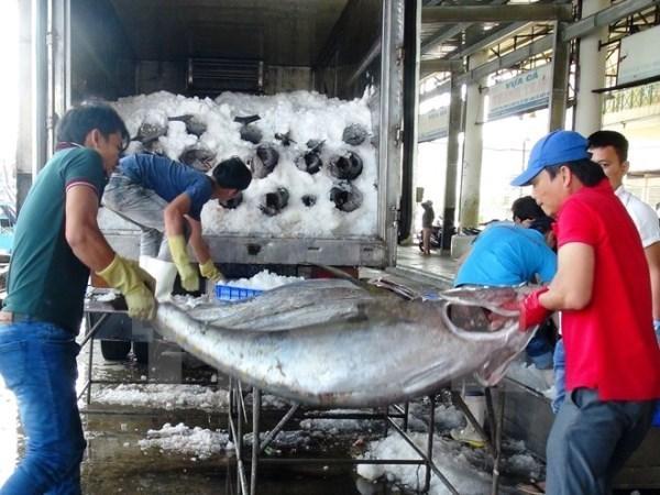 Hausse des exportations de produits aquatiques en huit mois hinh anh 1
