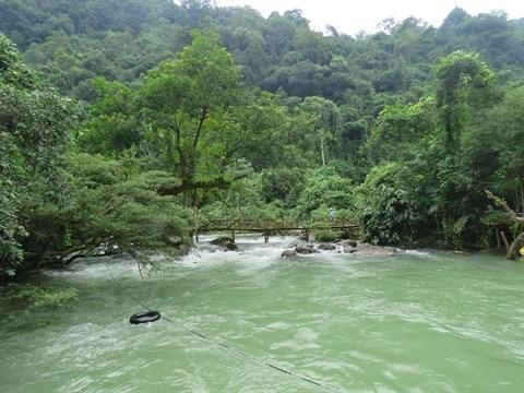 Mooc, la riviere qui jaillit des profondeurs hinh anh 1