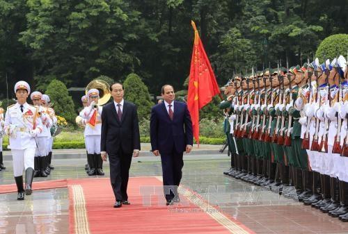 La visite du president egyptien au Vietnam revet une signification importante hinh anh 1