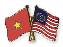 Les relations entre le Vietnam et la Malaisie continuent de prosperer hinh anh 1