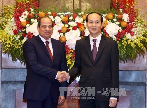Entretien entre les presidents vietnamien et egyptien hinh anh 1