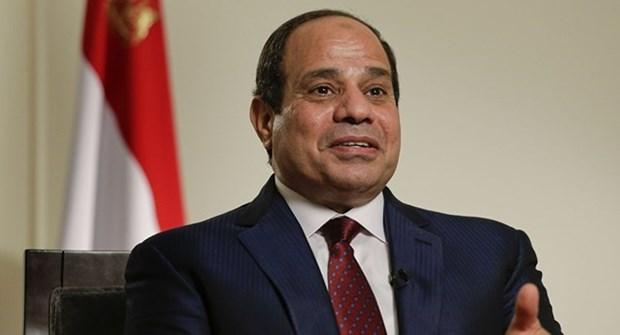 Le president egyptien entame sa visite d'Etat au Vietnam hinh anh 1