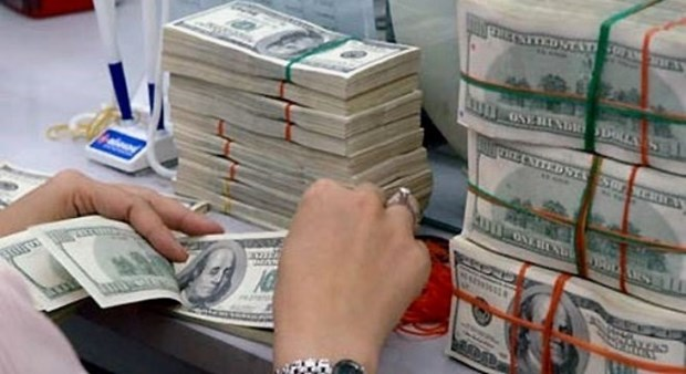 Trois milliards de dollars de devises etrangeres envoyees a Ho Chi Minh-Ville en huit mois hinh anh 1