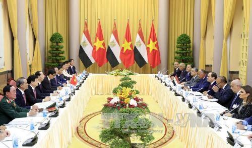 Communique de presse conjoint sur la visite d'Etat au Vietnam du president egyptien hinh anh 1