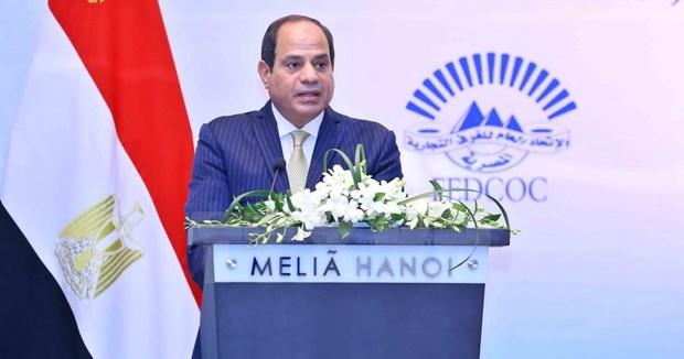 Forum d'affaires Vietnam-Egypte a Hanoi hinh anh 1