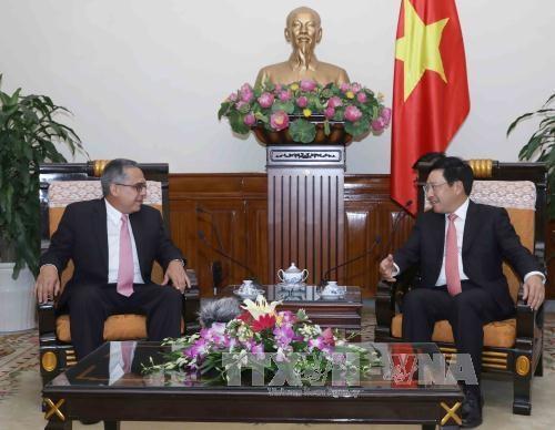 Le vice-PM Pham Binh Minh reitere la solidarite avec le peuple cubain hinh anh 1