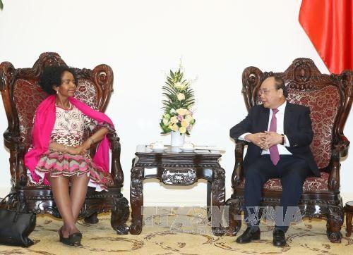 Le Vietnam considere l'Afrique du Sud comme un partenaire de premier plan en Afrique hinh anh 1