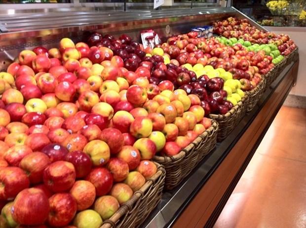 Forte hausse des importations nationales de legumes et de fruits en 8 mois hinh anh 1