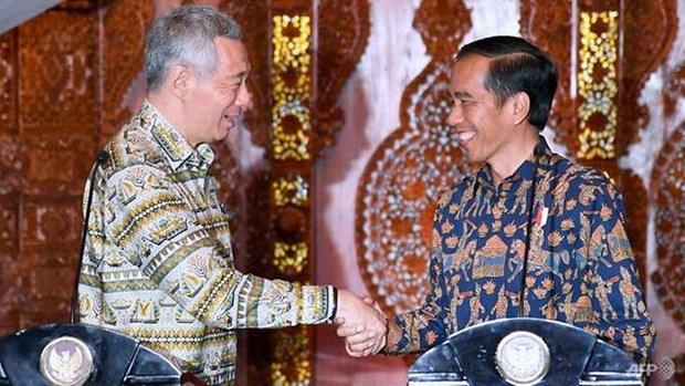 Singapour et Indonesie approfondissent leur cooperation hinh anh 1