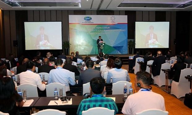 L'APEC discute de mesures visant a renforcer l'acces des PME aux sources de fonds hinh anh 1