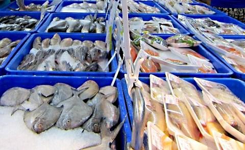 Bientot une exposition internationale sur l'aquaculture a Can Tho hinh anh 1