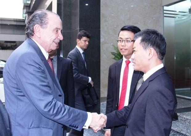 Vietnam et Bresil promeuvent les relations d'amitie entre les deux peuples hinh anh 1