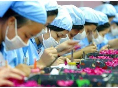 Forte croissance des exportations de pierres precieuses a Hong Kong hinh anh 1