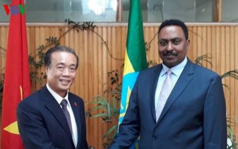 L'Ethiopie demande au Vietnam de rouvrir son ambassade a Addis-Abeba hinh anh 1