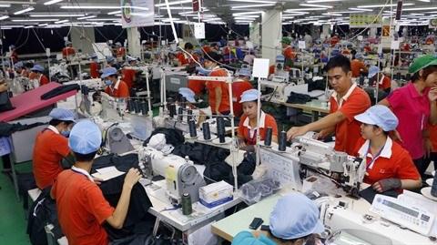 Tendance de l'emploi dans les entreprises non etatiques hinh anh 1