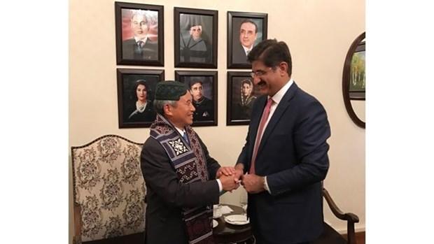 Vietnam - Pakistan : Divers potentiels dans les relations economiques hinh anh 1