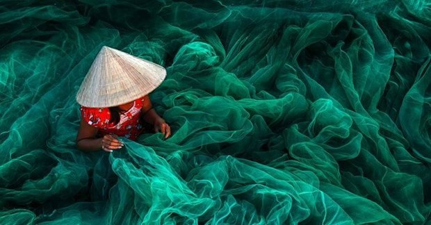 Une photo prise au Vietnam distinguee au Siena International Photo Awards hinh anh 1