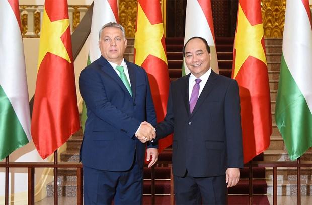 Le Vietnam prend en haute consideration le developpement de ses relations avec la Hongrie hinh anh 1