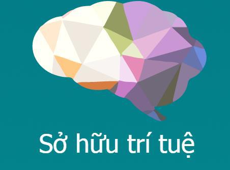 La WIPO aide le Vietnam a developper la propriete intellectuelle hinh anh 1