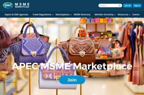 APEC 2017: lancement d'une nouvelle plateforme de transaction pour les MPME hinh anh 1