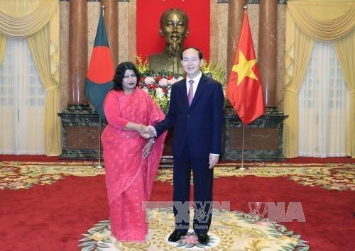 Le president Tran Dai Quang salue de nouveaux ambassadeurs hinh anh 2