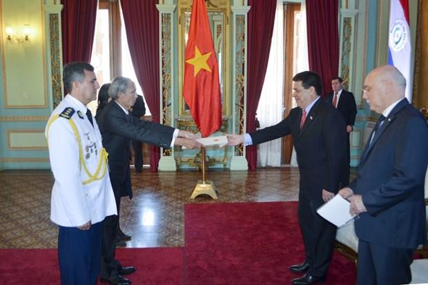 Renforcer la cooperation entre le Vietnam et le Paraguay hinh anh 1