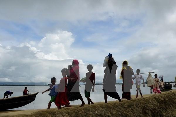 Le Myanmar autorise les chefs d'agences de l'ONU a venir au Rakhine hinh anh 1