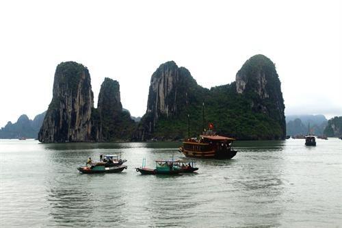 Le Vietnam se concentre sur le developpement du tourisme durable hinh anh 1