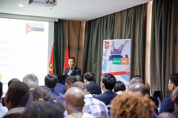 Les entreprises vietnamiennes et mozambicaines recherchent un partenariat plus etroit hinh anh 1