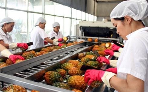 2,64 milliards de dollars d'exportations pour les fruits et legumes hinh anh 1