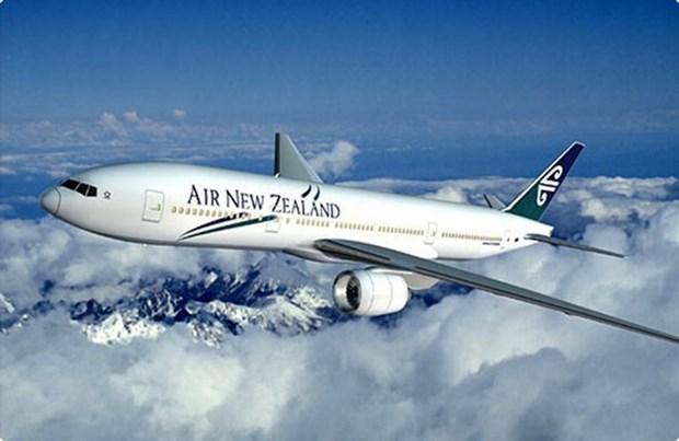 Air New Zealand poursuit ses vols directs vers le Vietnam hinh anh 1