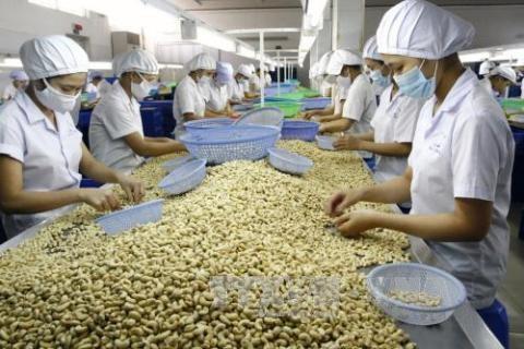 Le Vietnam renforce sa cooperation economique avec le Nigeria hinh anh 1