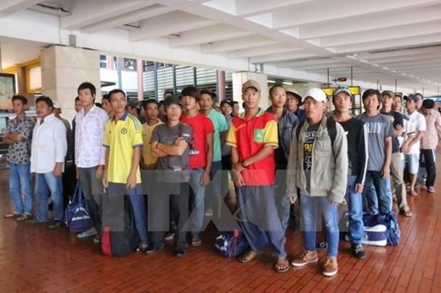 Rapatriement de 239 pecheurs vietnamiens arretes en Indonesie hinh anh 1