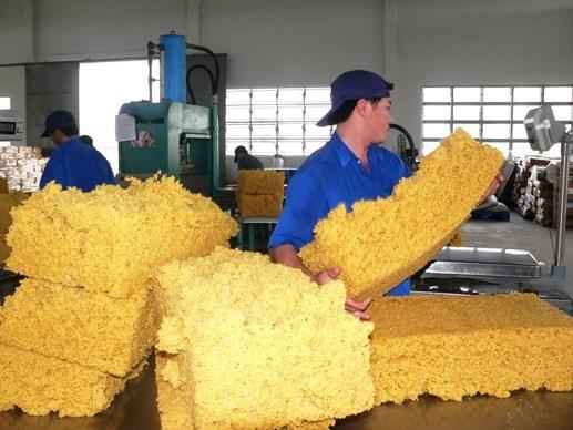 979.000 tonnes de caoutchouc exportees en 9 mois hinh anh 1