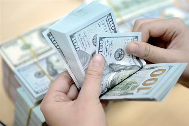 HCM-Ville : 72% des devises transferees par les Viet kieu vont dans les affaires et la production hinh anh 1