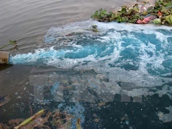 HCM-Ville appelle les investisseurs japonais dans l'industrie de l'environnement hinh anh 1