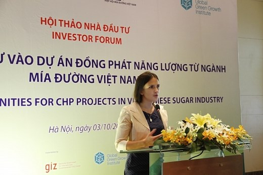 Developpement des bioenergies a base de bagasse: une opportunite pour les investisseurs hinh anh 1