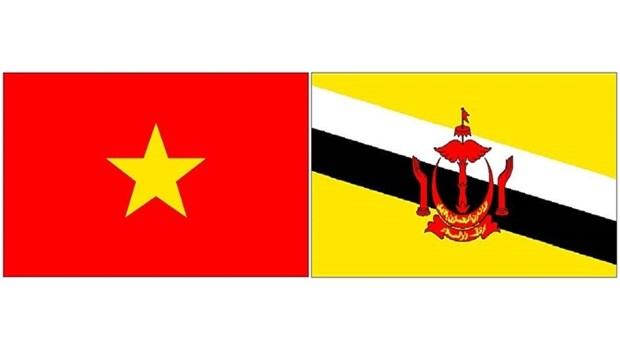 Vietnam - Brunei : volonte commune de dynamiser la cooperation hinh anh 1