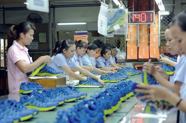 Les exportations nationales de chaussures au beau fixe hinh anh 1