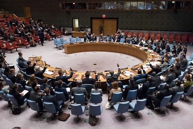 Le Vietnam appelle l'ONU a l'assister dans la reduction de la pauvrete hinh anh 1