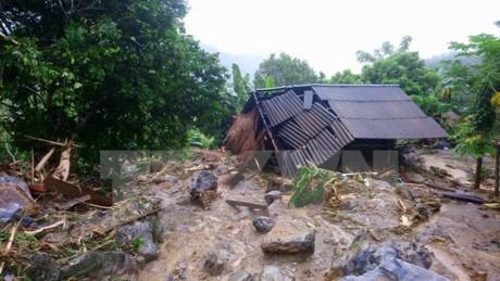 Le Japon au chevet des localites vietnamiennes touchees par les inondations hinh anh 1