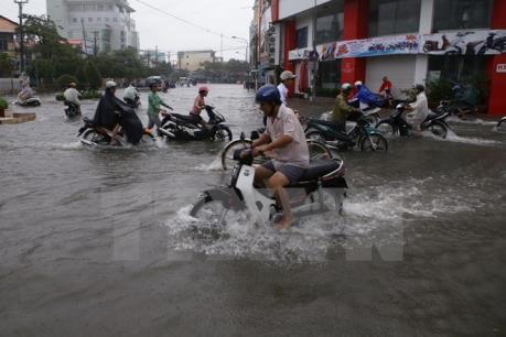 Le Japon soutient le Vietnam dans la reduction des emissions de CO2 hinh anh 1